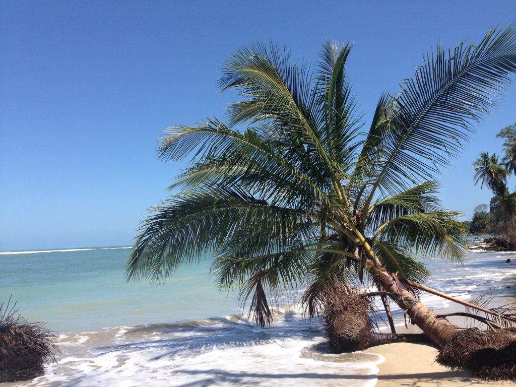 Costa Rica Life